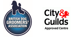 British Dog Groomers Association Uk